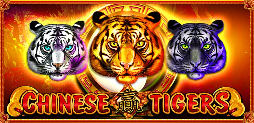 Chinese Tigers Slot Review