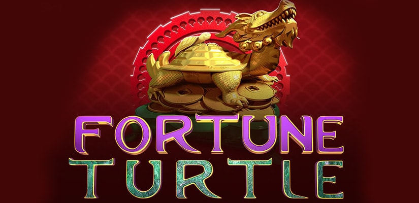 Fortune Turtle Slot Review