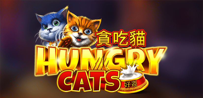 Hungry Cats Slot Review