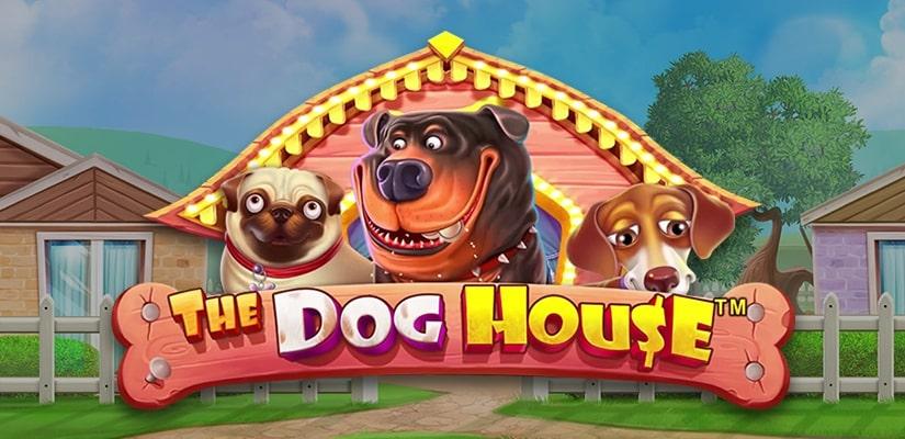 Slot Dogs Online