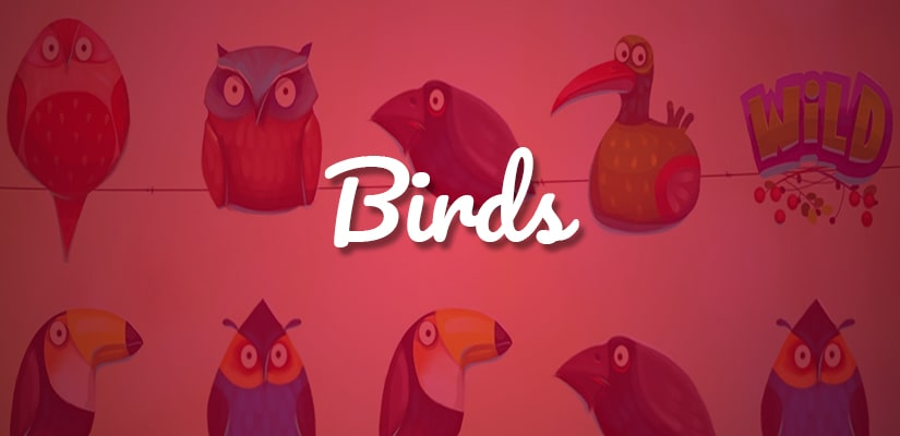 Birds Slot Review